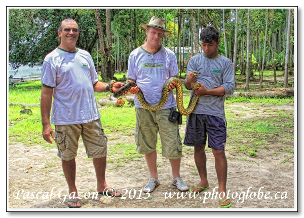 20130415_La jungle au Brésil__MG_4005 Guides + Anaconda.jpg