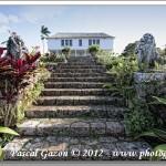 Prospect Plantation – Jamaïque