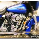 Harley #4…Blue