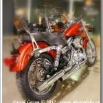 Harley #1.. FDXC Rouge