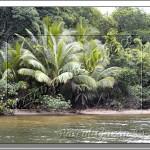 Expédition au Belize