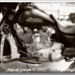 Harley #5…En Noir et Blanc