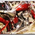 Harley #12…